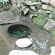Kiyomasa_well