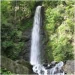 養老の滝(ようろうのたき)